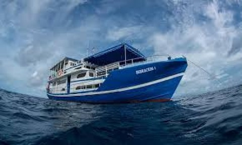 The Floating Surfhouse & a 71′ Charter Boat  in Indonesia